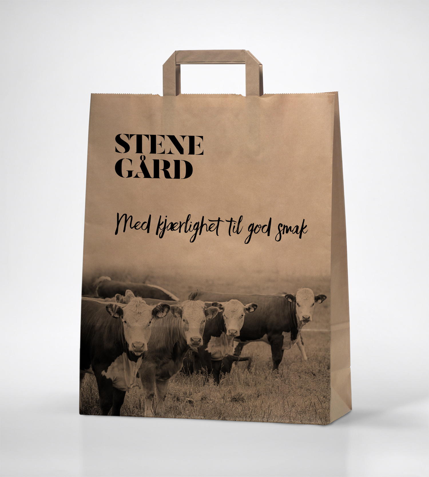 brown-paper-bag-mockup2